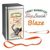 2020-FM-Slipleash-Blaze-text