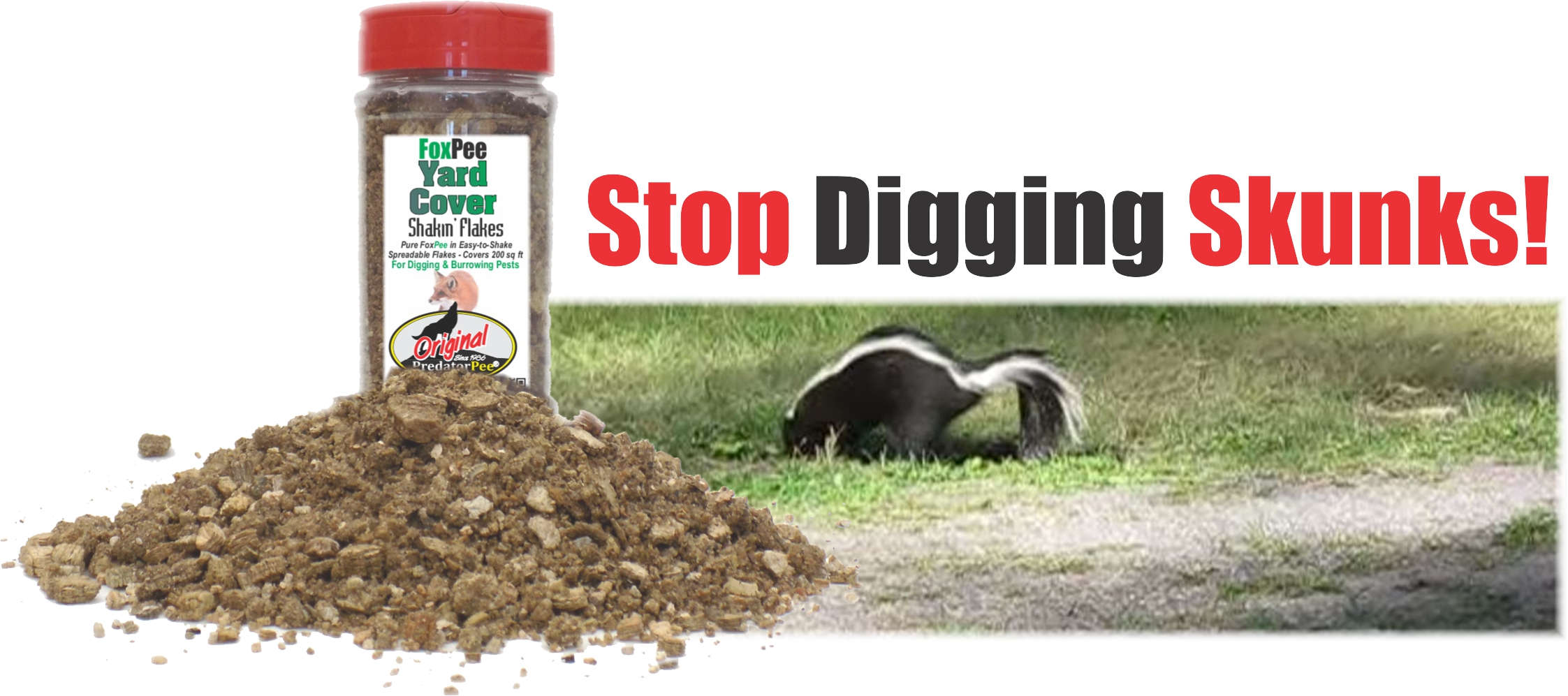 How to Stop Skunks from Digging up Lawn | Yard Skunk Repellent