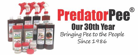 predator urine